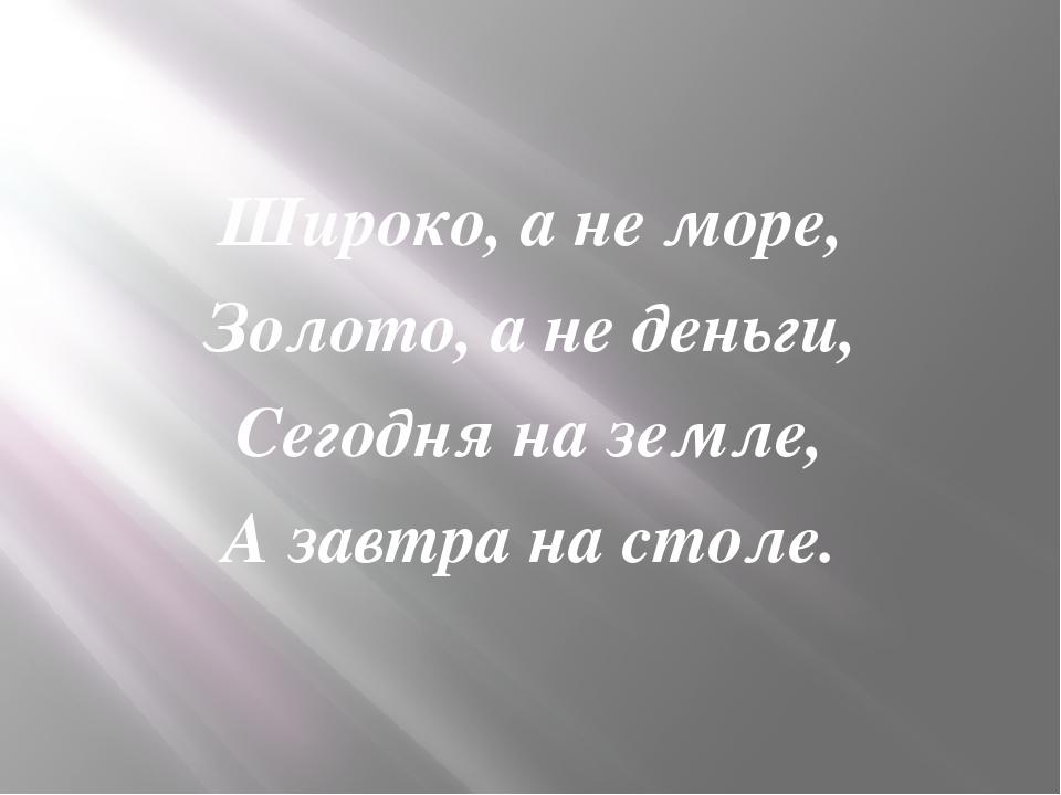 Широко, а не море, Золото, а не деньги, Сегодня на земле, А завтра на столе.