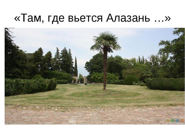 «Там, где вьется Алазань …»