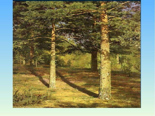 И.И.Шишкин «Сосны, освещённые солнцем».
