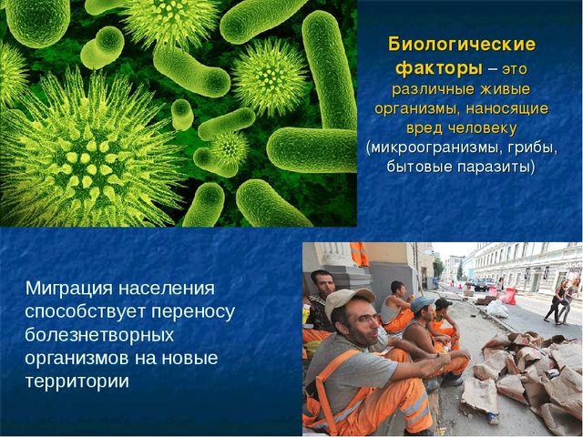 Биологические факторы – это различные живые организмы, наносящие вред человек...