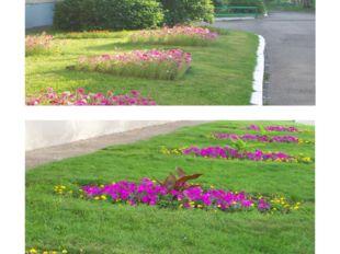Сочетание цветочных клумб, газонов, кустарников