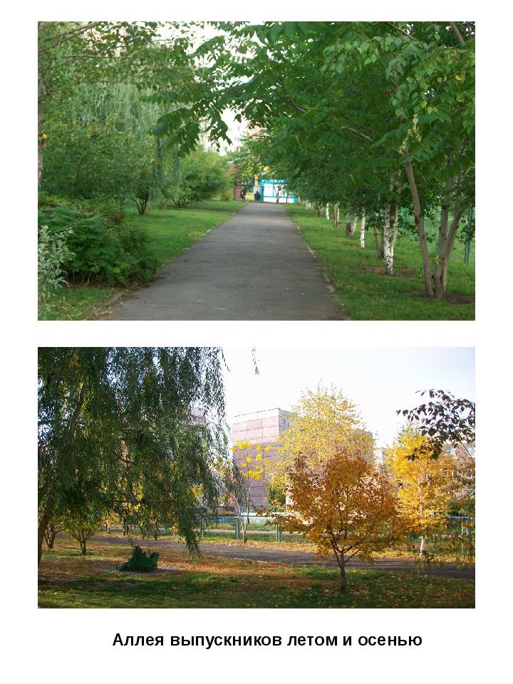 Аллея выпускников летом и осенью