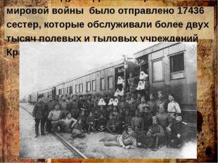 В 1916 году на фронты Первой мировой войны было отправлено 17436 сестер, кот