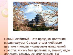 Самый любимый – это праздник цветения вишни сакуры. Сакура стала любимым цве
