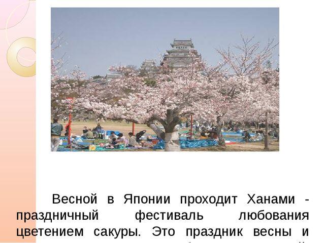 Весной в Японии проходит Ханами - праздничный фестиваль любования цветением...