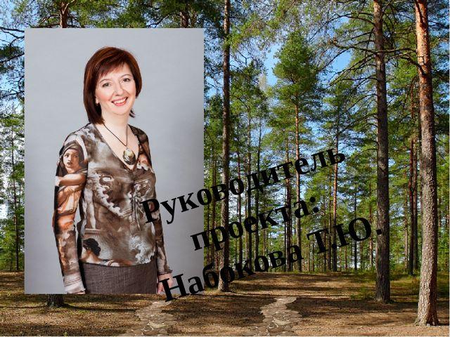 Руководитель проекта: Набокова Т.Ю.