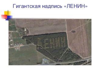 Гигантская надпись «ЛЕНИН»