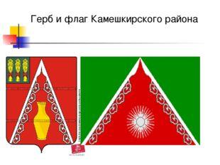 Герб и флаг Камешкирского района