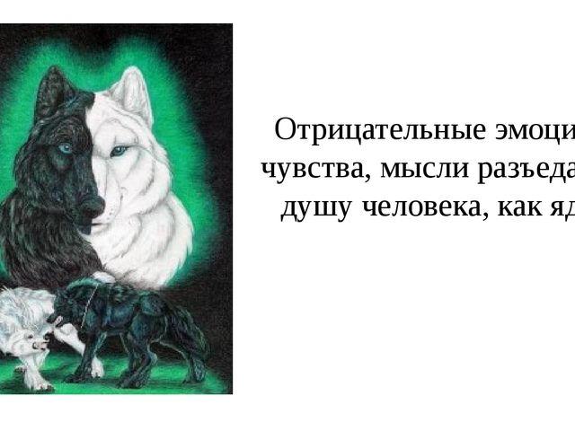 Отрицательные эмоции, чувства, мысли разъедают душу человека, как яд.