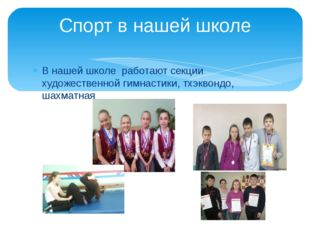 В нашей школе работают секции художественной гимнастики, тхэквондо, шахматная
