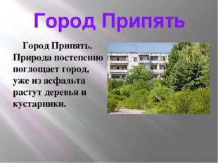 Город Припять Город Припять. Природа постепенно поглощает город, уже из асфал