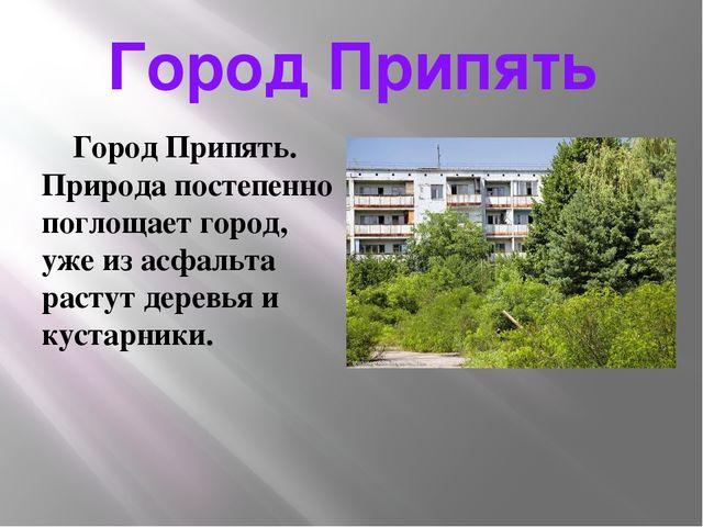 Город Припять Город Припять. Природа постепенно поглощает город, уже из асфал...