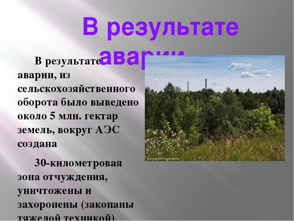 В результате аварии… В результате аварии, из сельскохозяйственного оборота б...