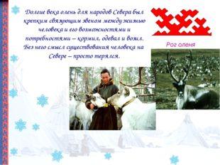 Долгие века олень для народов Севера был крепким связующим звеном между жизнь