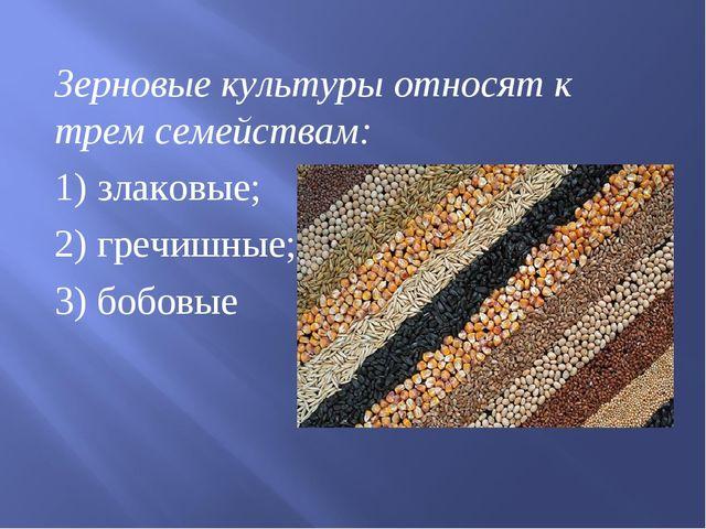 Зерновые культуры относят к трем семействам: 1) злаковые; 2) гречишные; 3) бо...