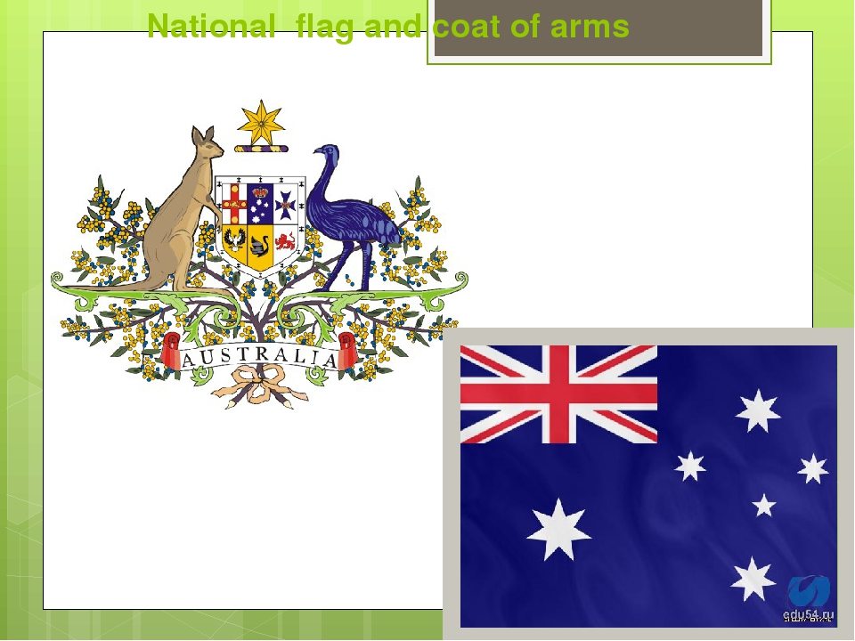 National flag and coat of arms