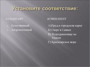 ЛАНДШАФТ КОМПОНЕНТ Естественный Антропогенный А)Пруд в городском парке Б) Озе
