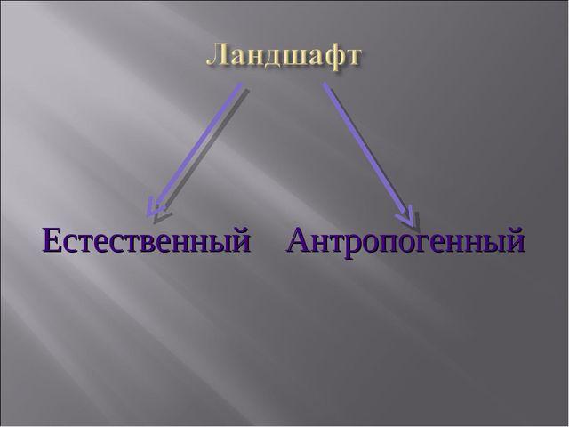 Естественный Антропогенный