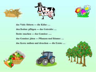 das Vieh: füttern — die Kühe: … den Boden: pflügen — das Getreide: … Beete: m