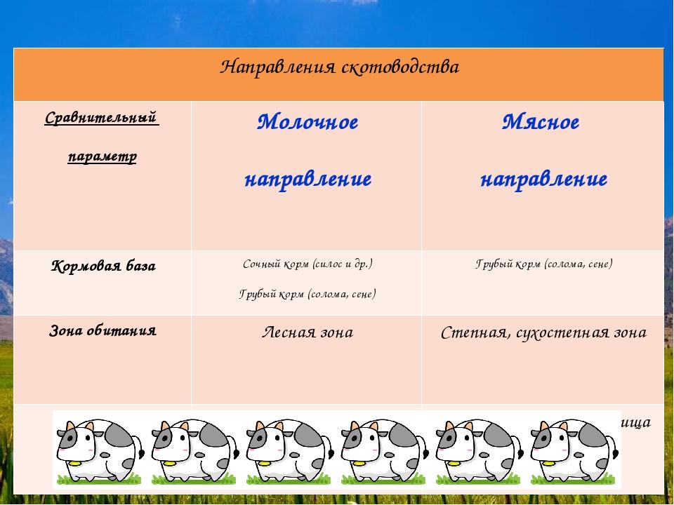 Направления скотоводства Сравнительный параметрМолочное направлениеМясное...