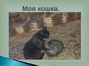 У меня есть кошка.Её зовут Нюша.У неё родился котёнок Васька.Они добрые и лас