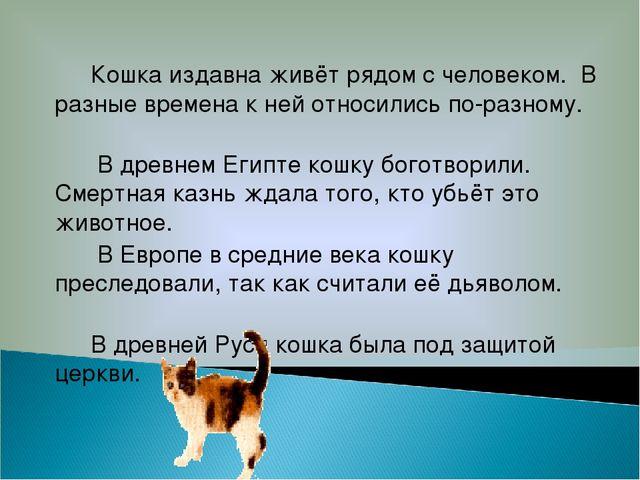 Кошка издавна живёт рядом с человеком. В разные времена к ней относились по-...