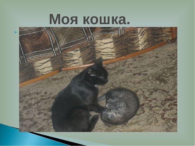 У меня есть кошка.Её зовут Нюша.У неё родился котёнок Васька.Они добрые и лас...