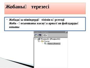 Жобадағы пішіндердің тізімін көрсетеді Жоба- қосымшаны жасауға арналған файл