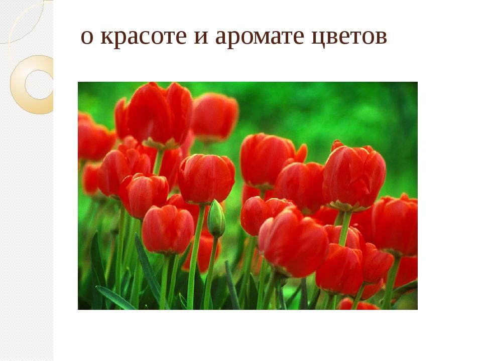 о красоте и аромате цветов