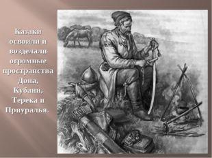 Казаки освоили и возделали огромные пространства Дона, Кубани, Терека и Приур