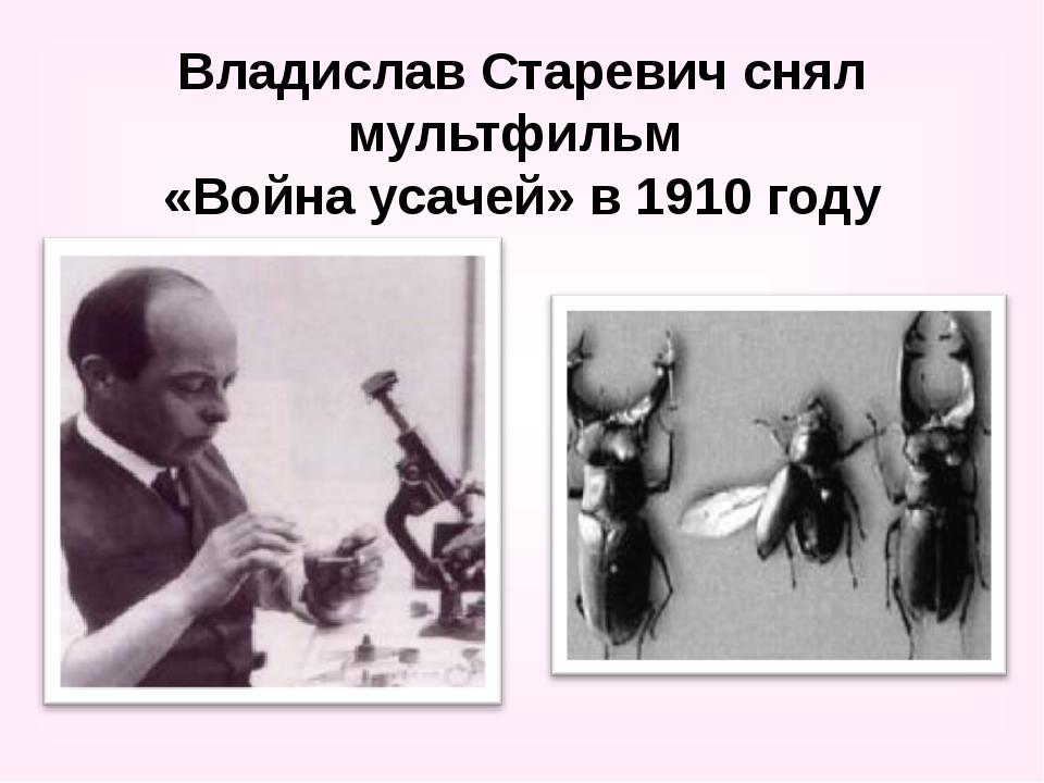Владислав Старевич снял мультфильм «Война усачей» в 1910 году