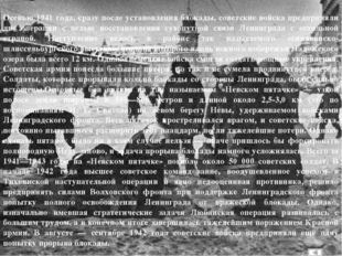 Памятники обороны Ленинграда Один из монументов «Ржевского коридора» на шоссе
