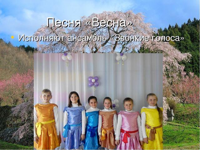 Песня «Весна» Исполняют ансамбль «Звонкие голоса»