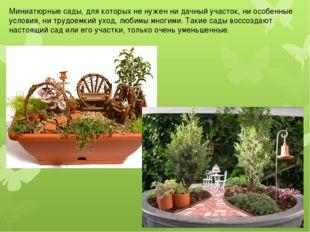 Миниатюрные сады, для которых не нужен ни дачный участок, ни особенные услови