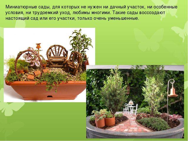 Миниатюрные сады, для которых не нужен ни дачный участок, ни особенные услови...