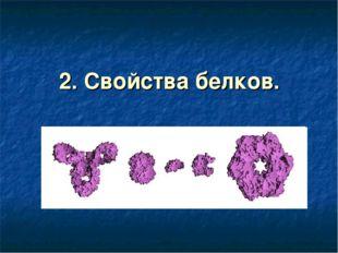 2. Свойства белков.