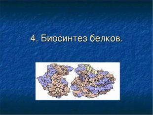 4. Биосинтез белков.