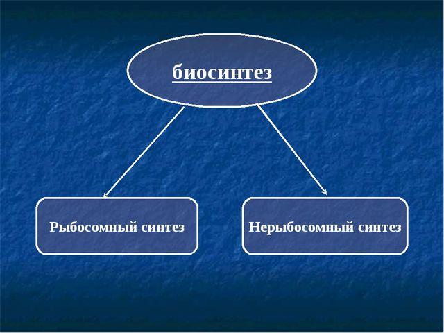 биосинтез Рыбосомный синтез Нерыбосомный синтез