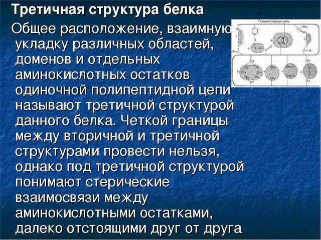 Третичная структура белка Общее расположение, взаимную укладку различных обл...