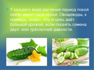 У каждого вида растения период покоя семян имеет свои сроки. Овощеводы, к при