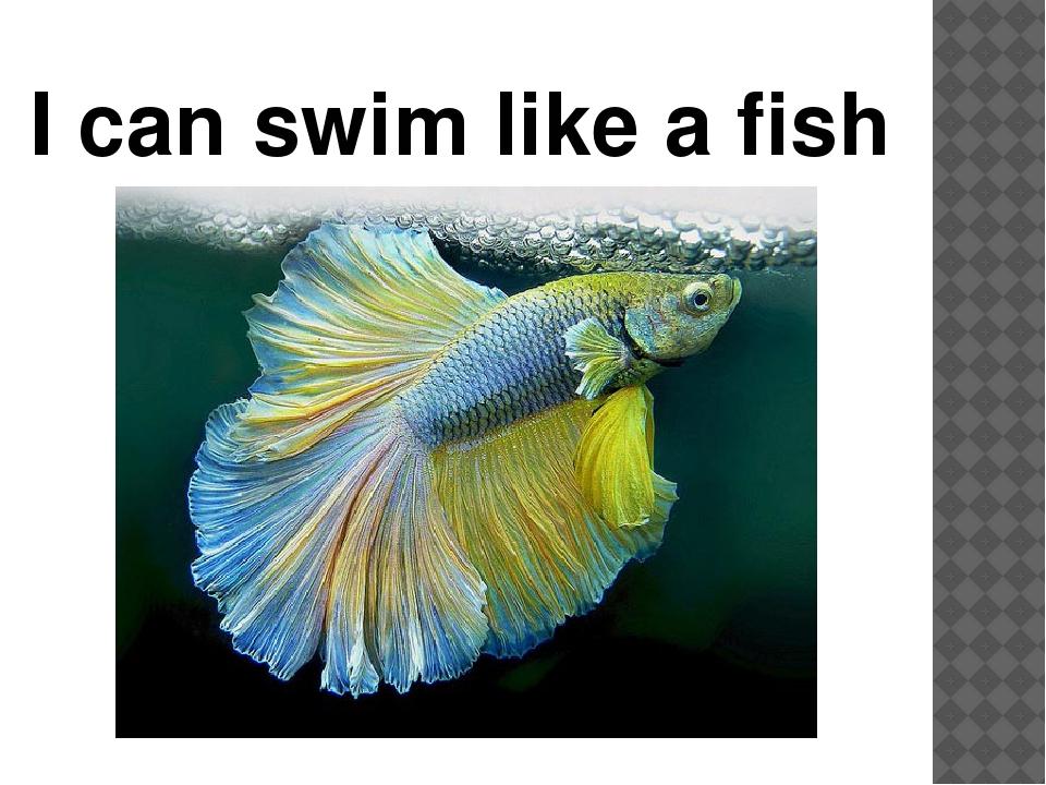 I can swim like a fish