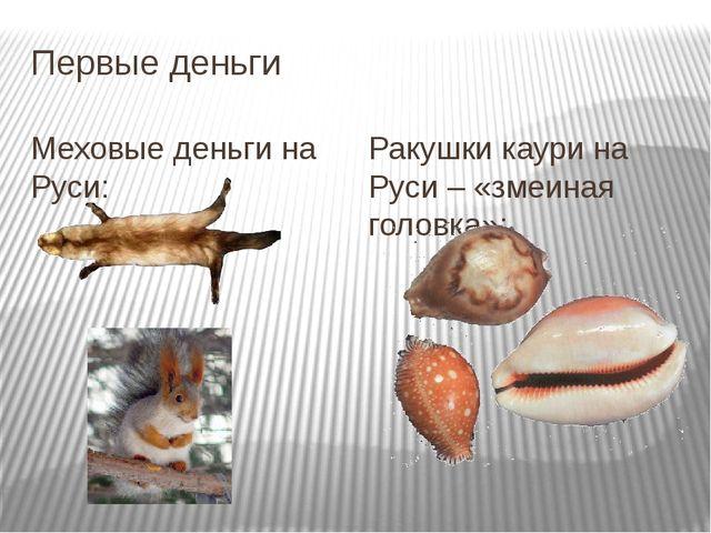 Первые деньги Меховые деньги на Руси: Ракушки каури на Руси – «змеиная головк...
