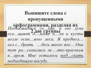 Выпишите слова с пропущенными орфограммами, разделяя их 2 две группы Поднимае