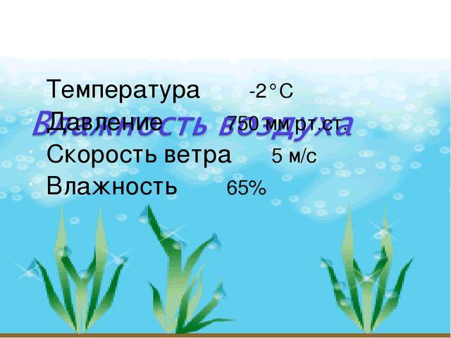 Температура -2°С Давление750 мм рт.ст. Скорость ветра5 м/с Влажность...