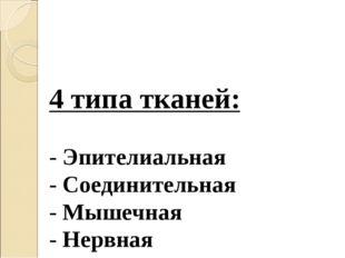 4 типа тканей: - Эпителиальная - Соединительная - Мышечная - Нервная