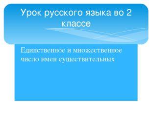 Единственное и множественное число имен существительных Урок русского языка в
