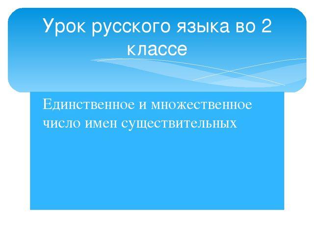 Единственное и множественное число имен существительных Урок русского языка в...