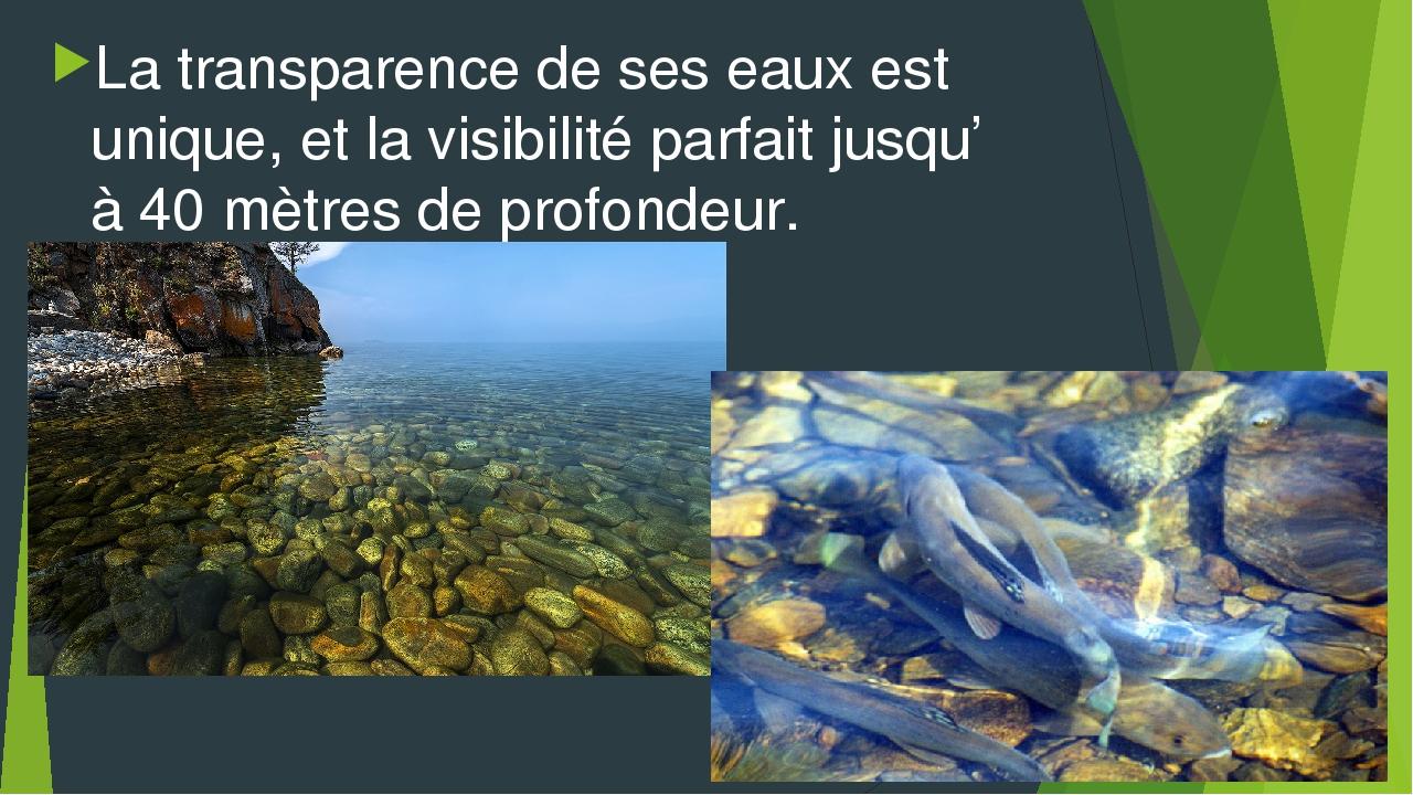 La transparence de ses eaux est unique, et la visibilité parfait jusqu' à 40...