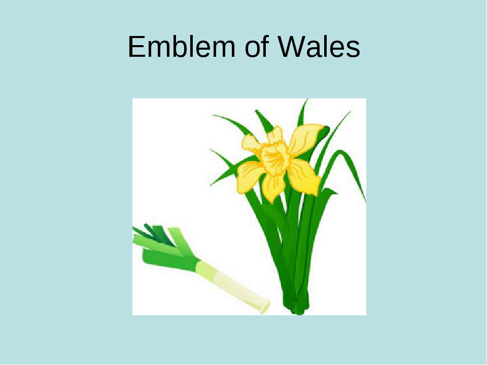 Emblem of Wales