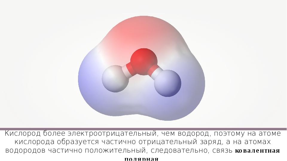 Кислород более электроотрицательный, чем водород, поэтому на атоме кислорода...